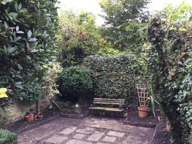 Quality Garden Maintenance London For A Trimmed Amp Neat
