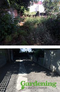 garden clearance - before and after