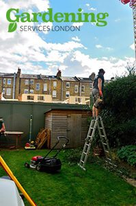 London garden maintenance
