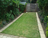 Grass Cutting After Photo