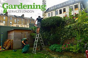 professional gardeners London