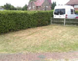 Trimmed Lawn and Hedge