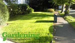 professional lawn care London