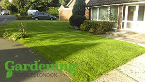 lawn mowing and maintenance in London