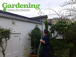London gutter cleaning