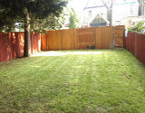 New Lawn and Mowed Lawn