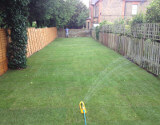 Newly Laid Lawn in London