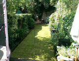 Newly Mowed London Lawn